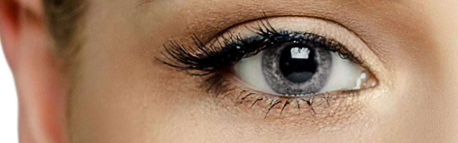 Das Foto zeigt unsere Graue Farbige Kontaktlinsen