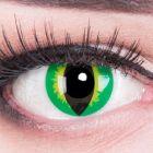 Das Produktfoto zeigt unsere Crazy gruen Farbige Kontaktlinse Green Dragon in einem echten Auge