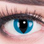 Das Produktfoto zeigt unsere Crazy blaue Farbige Kontaktlinse Mystic Cat in einem echten Auge