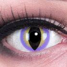 Das Produktfoto zeigt unsere Crazy lila Farbige Kontaktlinse Purple Dragon in einem echten Auge