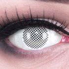 Das Produktfoto zeigt unsere Crazy weisse Farbige Kontaktlinse White Screen in einem echten Auge