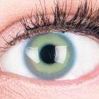 Das Produktfoto zeigt unsere Farbige Blaue Kontaktlinse Alice Blue in einem echten Auge