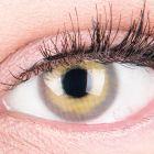 Das Produktfoto zeigt unsere Farbige Graue Kontaktlinse Alice Grey in einem echten Auge