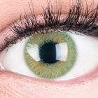 Das Produktfoto zeigt unsere Farbige Gruene Kontaktlinse Grace Green in einem echten Auge