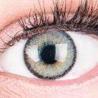 Das Produktfoto zeigt unsere Farbige Graue Kontaktlinse Mirel Grey in einem echten Auge