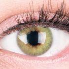 Das Produktfoto zeigt unsere Farbige Gruene Kontaktlinse Rose Green in einem echten Auge