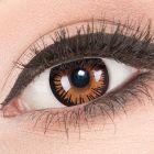 Das Produktfoto zeigt unsere Crazy braune Farbige Kontaktlinse Eternal Amber in einem echten Auge