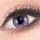 Das Produktfoto zeigt unsere Crazy lila Farbige Kontaktlinse Purple Fee in einem echten Auge