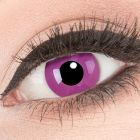 Das Produktfoto zeigt unsere Crazy lila Farbige Kontaktlinse Purple in einem echten Auge