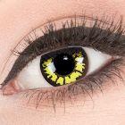 Das Produktfoto zeigt unsere Crazy gelbe Farbige Kontaktlinse Yellow Wolf in einem echten Auge