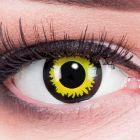 Das Produktfoto zeigt unsere Crazy gelbe Farbige Kontaktlinse Eclipse in einem echten Auge