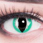 Das Produktfoto zeigt unsere Crazy gelbe Farbige Kontaktlinse Cat Eye in einem echten Auge