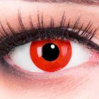 Das Produktfoto zeigt unsere Crazy rote Farbige Kontaktlinse Red Devil in einem echten Auge