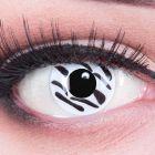 Das Produktfoto zeigt unsere Crazy weisse Farbige Kontaktlinse Zebra in einem echten Auge