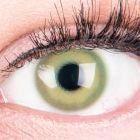 Das Produktfoto zeigt unsere Farbige Gruene Kontaktlinse Alice Green in einem echten Auge