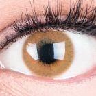 Das Produktfoto zeigt unsere Farbige Braune Kontaktlinse Grace Brown in einem echten Auge
