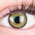 Das Produktfoto zeigt unsere Farbige Grüne Kontaktlinse Mirel Green in einem echten Auge