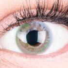 Das Produktfoto zeigt unsere Farbige Graue Kontaktlinse Paradise Grey in einem echten Auge