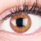 Das Produktfoto zeigt unsere Farbige Braune Kontaktlinse Rose Brown in einem echten Auge