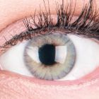Das Produktfoto zeigt unsere Farbige Graue Kontaktlinse Rose Grey in einem echten Auge