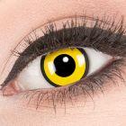 Das Produktfoto zeigt unsere Crazy gelbe Farbige Kontaktlinse Black Yellow in einem echten Auge