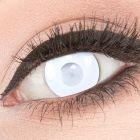 Das Produktfoto zeigt unsere Crazy weisse Farbige Kontaktlinse Blind Mentalist in einem echten Auge