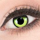 Das Produktfoto zeigt unsere Crazy gruen Farbige Kontaktlinse Green Lunatic in einem echten Auge