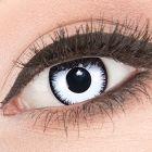 Das Produktfoto zeigt unsere Crazy weisse Farbige Kontaktlinse Lunatic in einem echten Auge