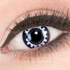 Das Produktfoto zeigt unsere Crazy schwarze Farbige Kontaktlinse Steam Punk in einem echten Auge