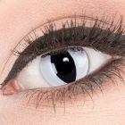 Das Produktfoto zeigt unsere Crazy weisse Farbige Kontaktlinse Viper in einem echten Auge