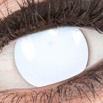 Blind White