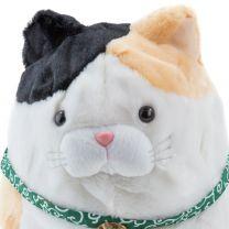 Grumpy Cat Weiß