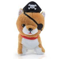 Shiba Hund Pirat